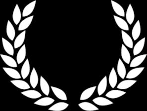 Vevey International Film Festival (Suisse)